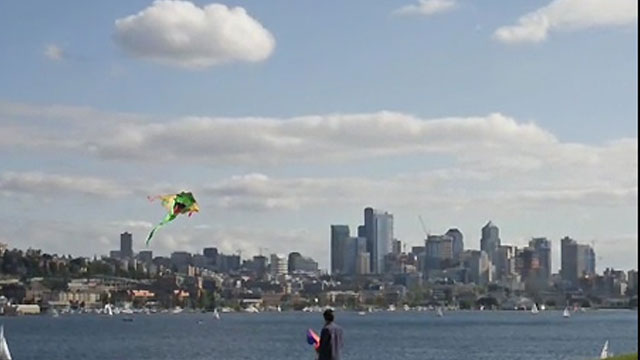 Seattle Public Utilities: Plan to Protect Seattle`s Waterways Overview