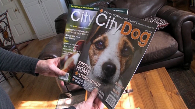 CityStream: City Dog Magazine