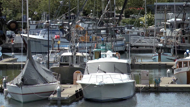 Community Stories: Fishermen's Terminal Revisited