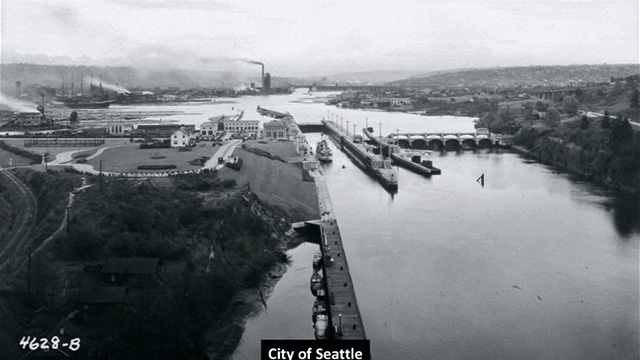 The Ballard Locks, 100 Years