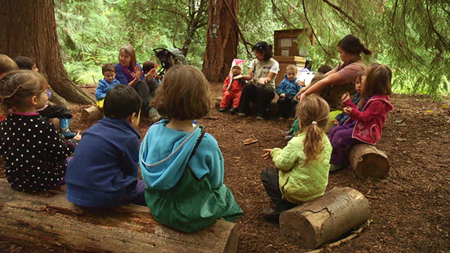 CityStream: Outdoor Learning at Fiddleheads Forest School