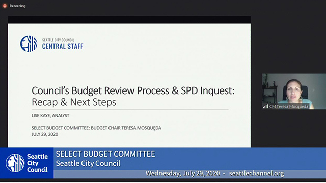 Select Budget Committee Session II 7/29/20