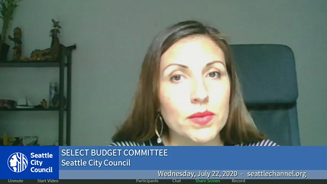 Select Budget Committee 7/22/20