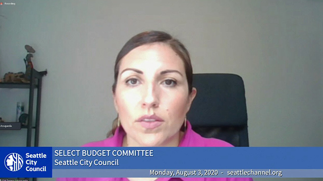 Select Budget Committee 8/3/20