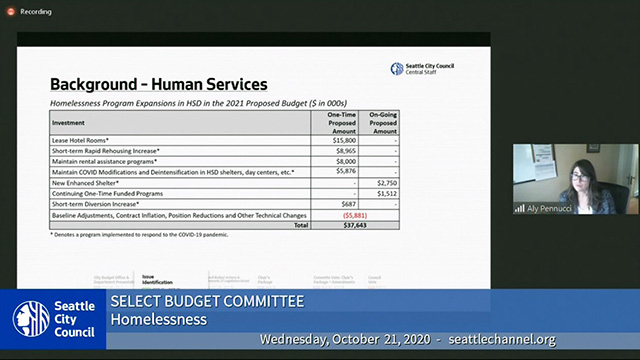 Select Budget Committee Session II 10/21/20
