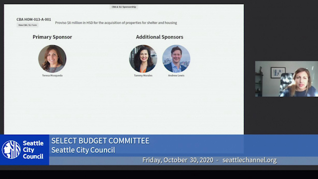 Select Budget Committee Session II 10/30/20